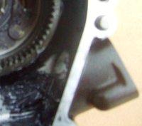 S7305749 - Kopie.JPG