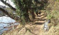 Adige Trail.jpg