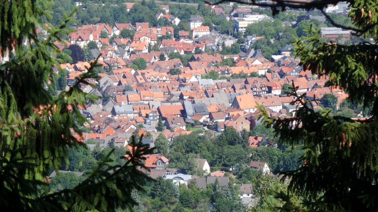 04 Goslars alte Daecher.jpg