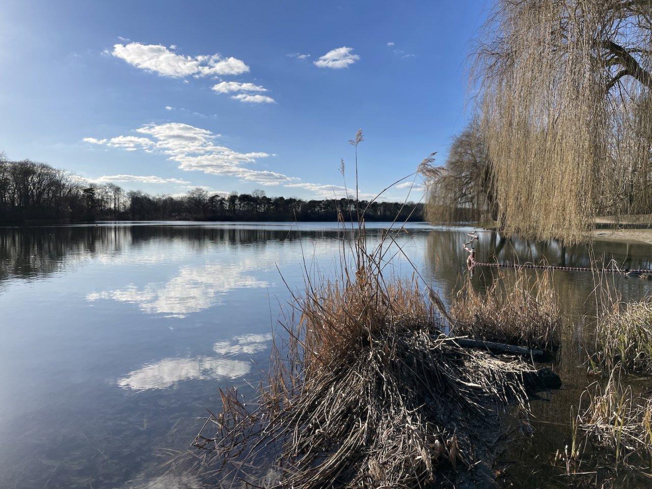10 Auwaldsee.JPG