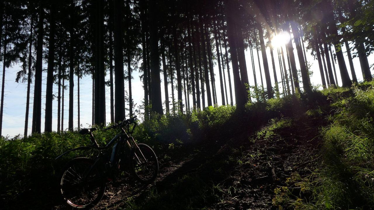 17 Harz Anfang.JPG