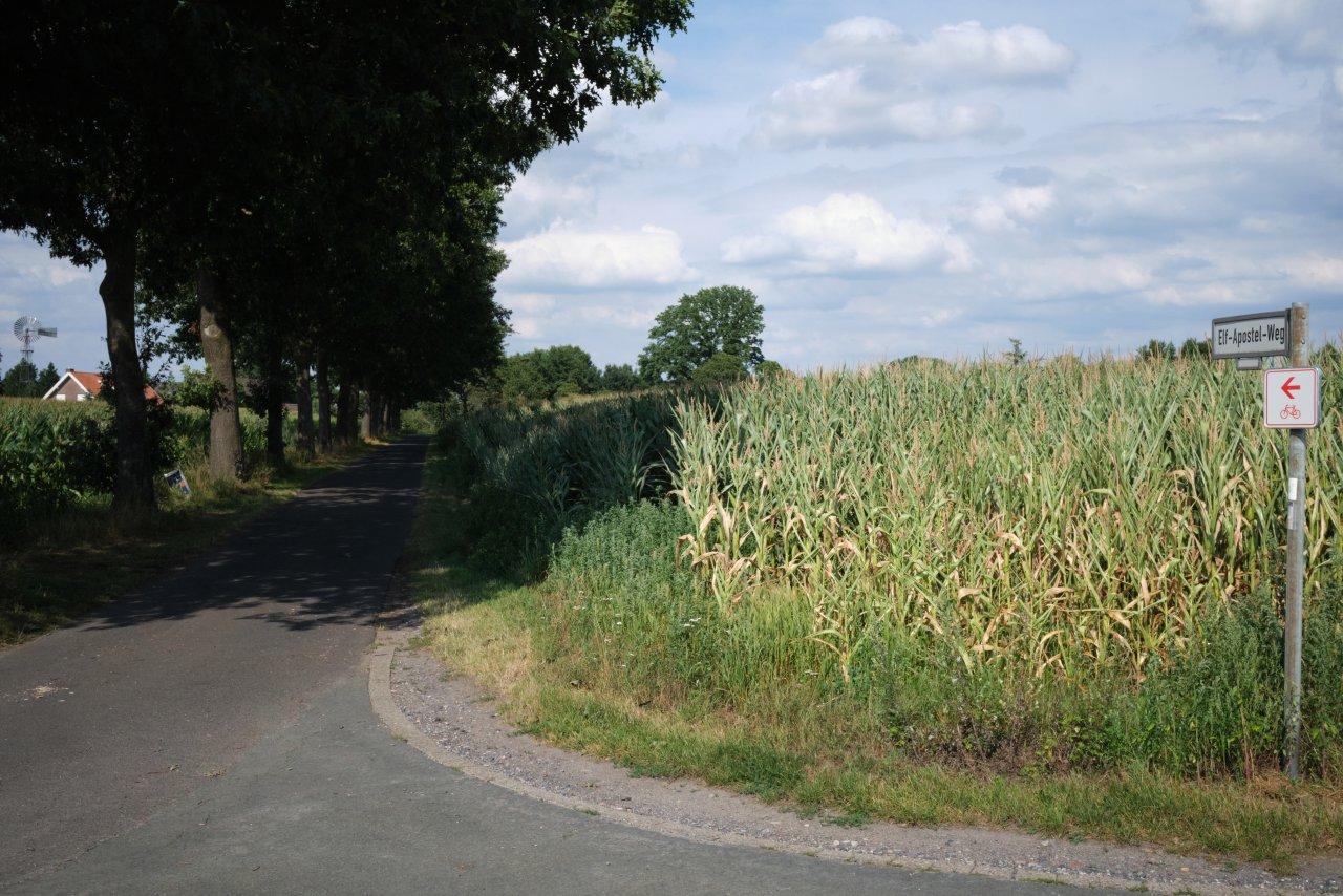 2020.08.14-0567C1 11Apostelweg.jpg