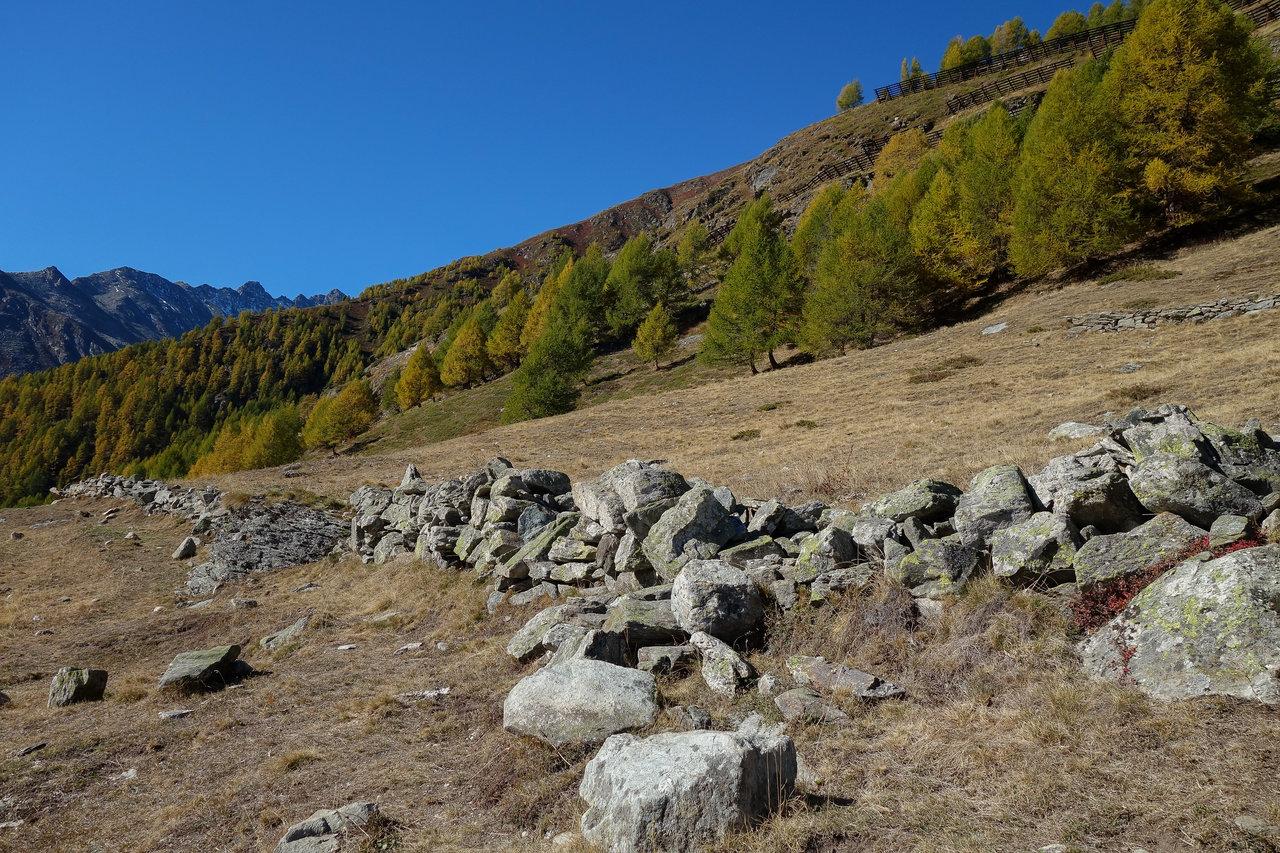 3_Herbstfarben.jpg