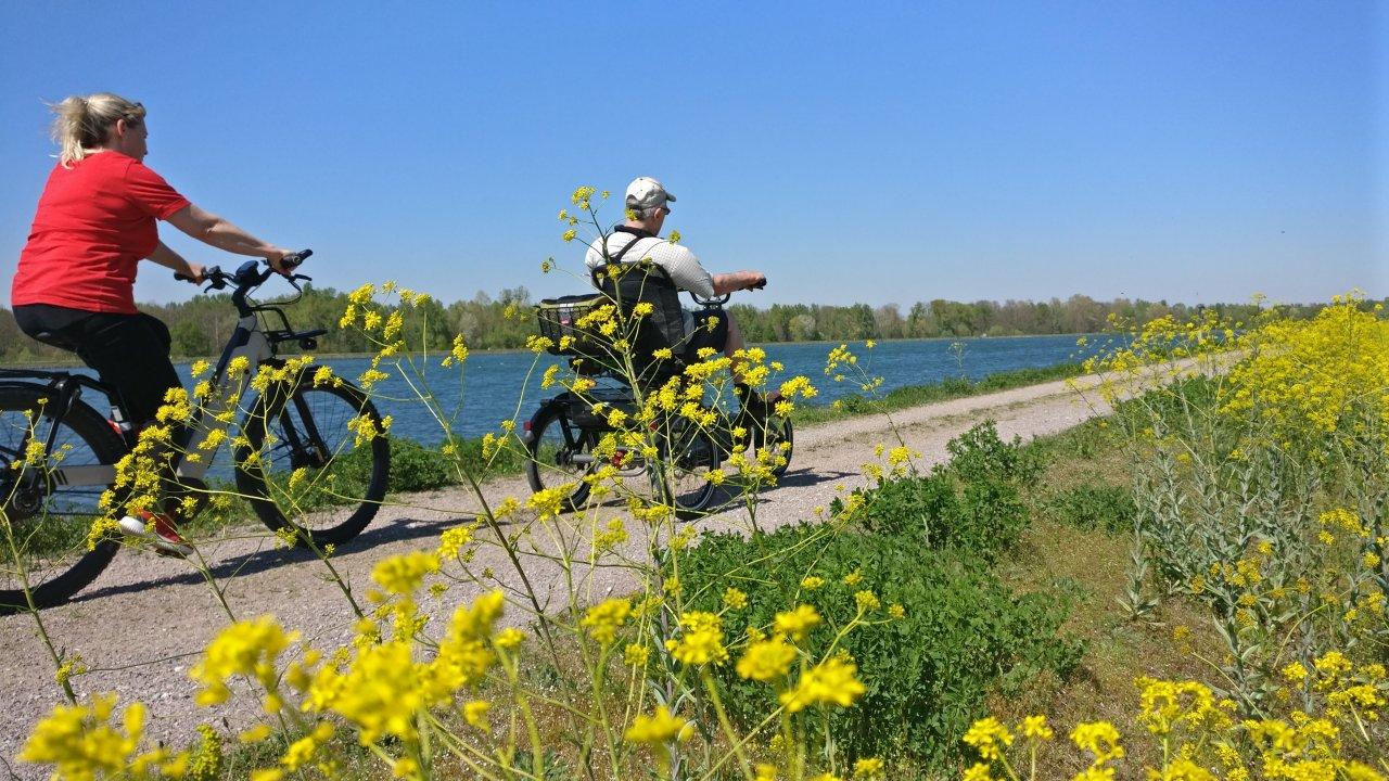 Am Rhein.jpg