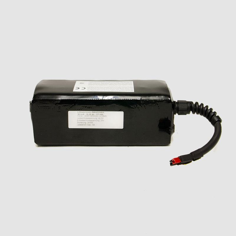 EBS-Hi-Power-Ebike-Akku-36V-1035Ah_ba1003sb-10_F01.jpg
