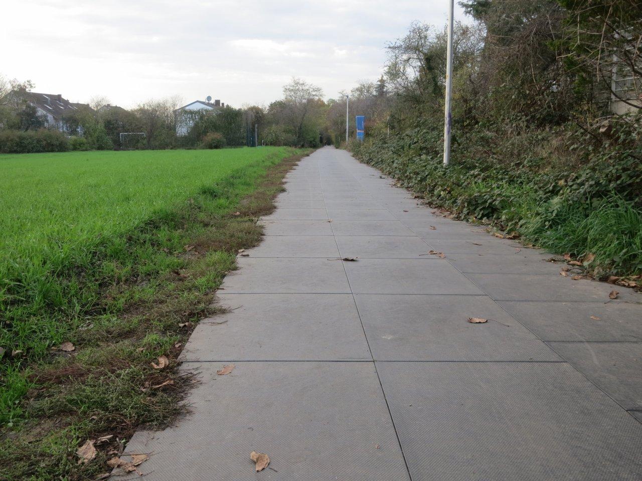Radweg Bild 1.JPG