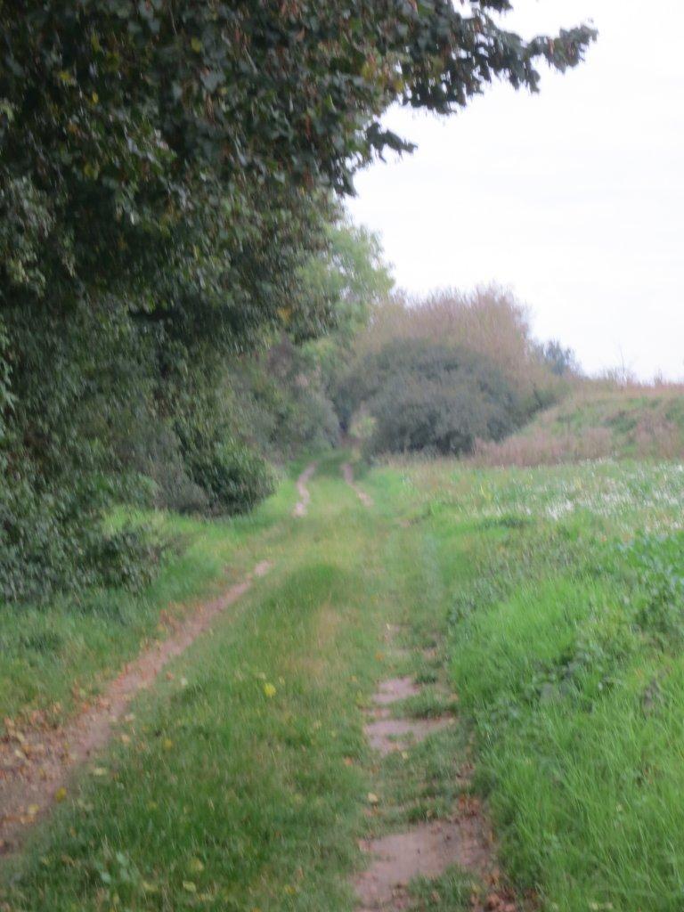 Radweg_3 weiterer Verlauf.JPG