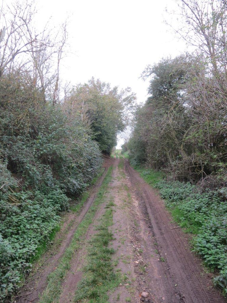 Radweg_4 weiterer Verlauf.JPG