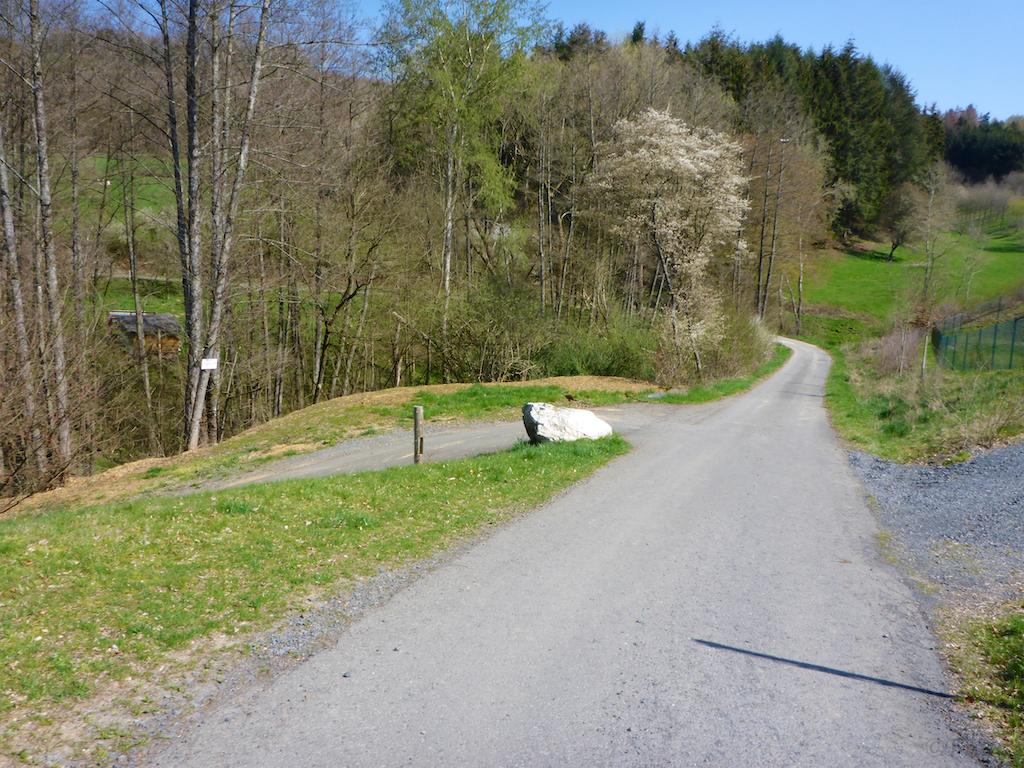 Stein-Wingert 3.jpg