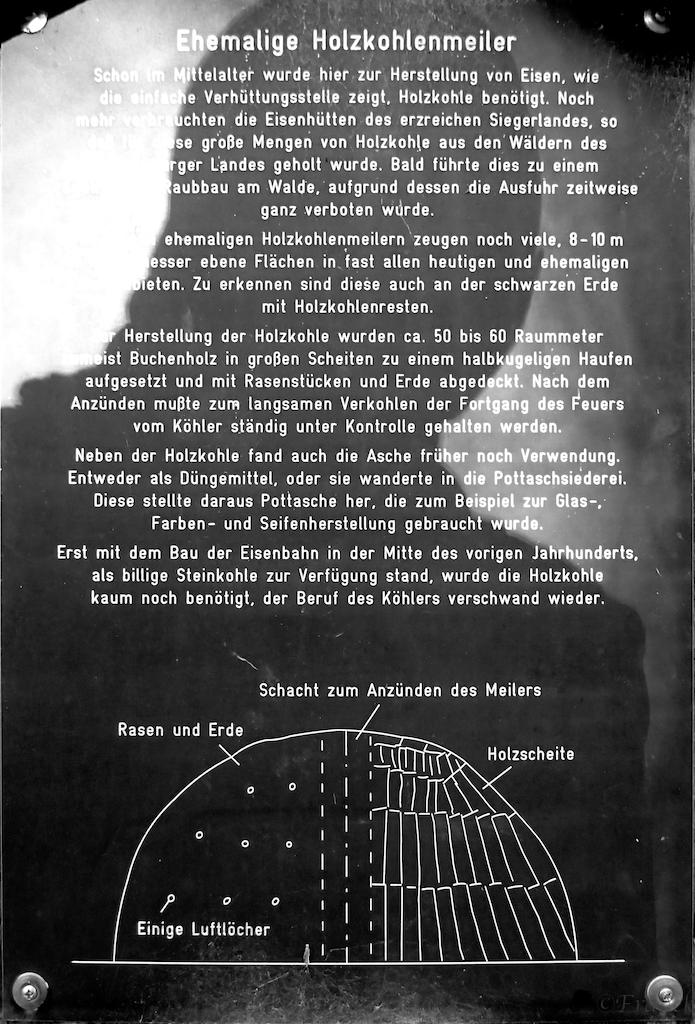 Stein-Wingert 6.jpg