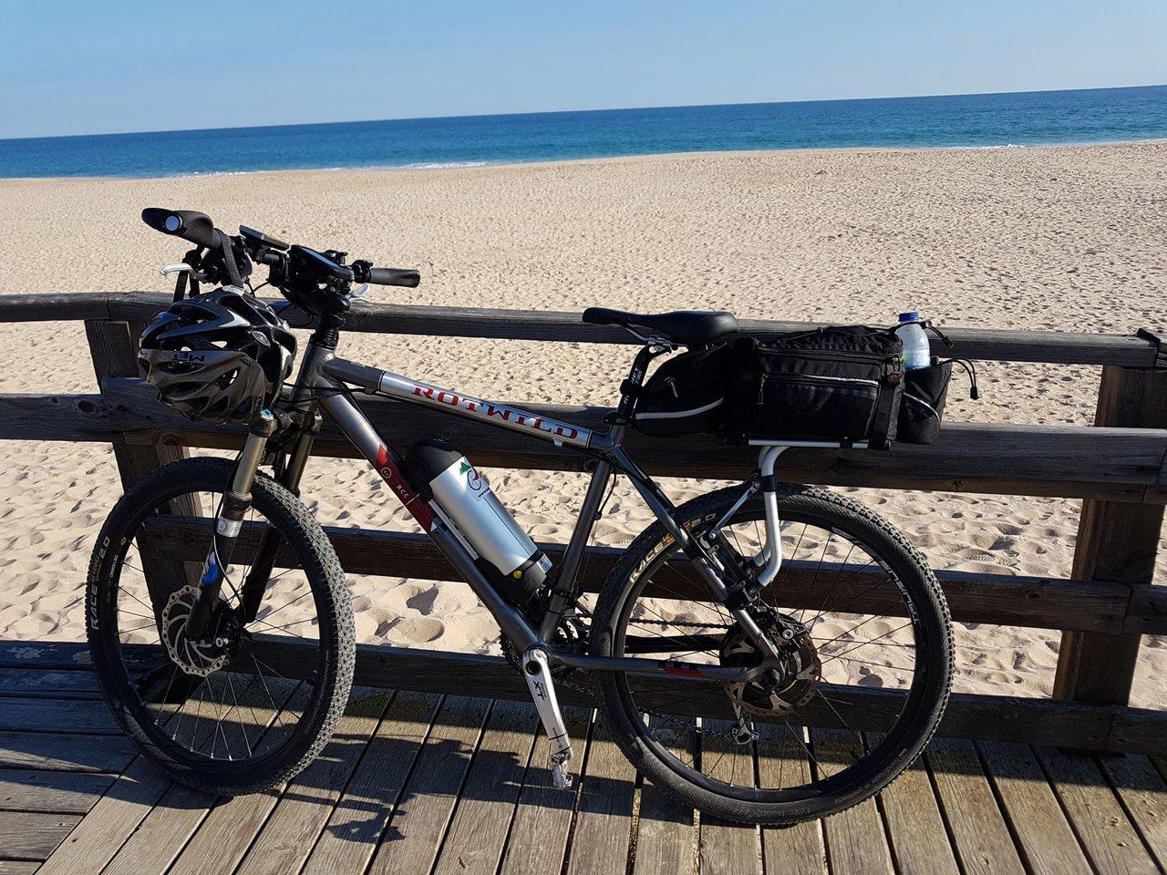thule pack n pedal tour rack