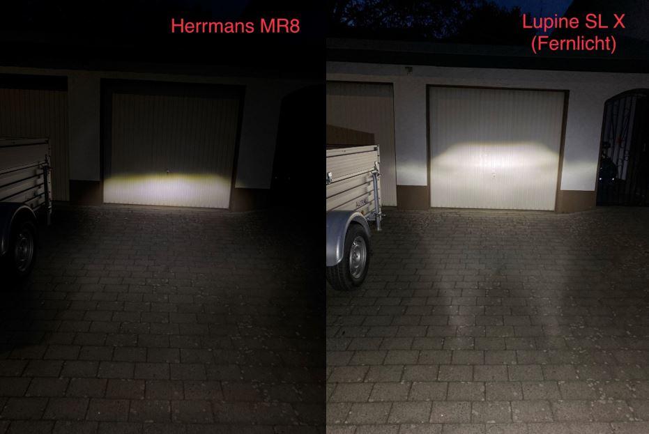 Vergleich 2_HerrmansLupine.jpg