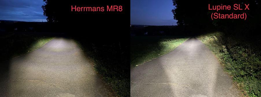 Vergleich 3_HerrmansLupine.jpg
