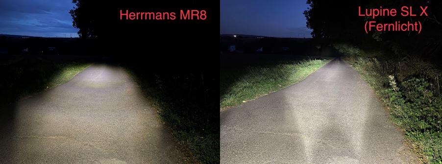 Vergleich 4_HerrmansLupine.jpg