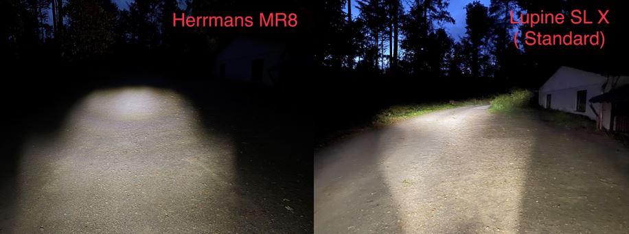 Vergleich 5_HerrmansLupine.jpg