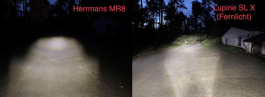 Vergleich 6_HerrmansLupine.jpg