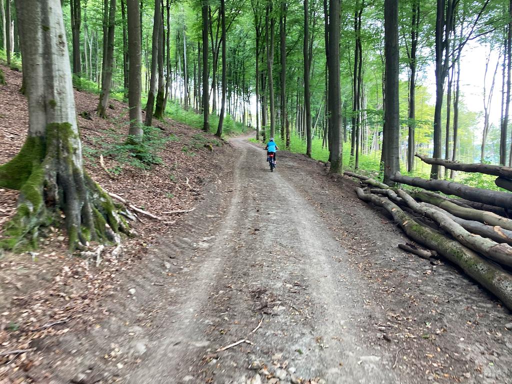 Waldrunde 03.08.  6.jpg
