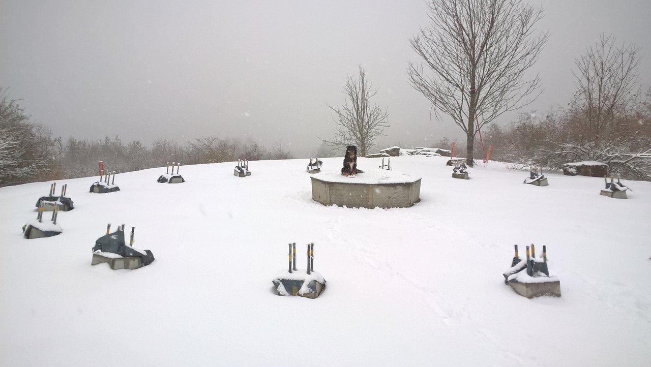 Wetter 71155 Altdorf